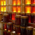 Medovina je staršia ako ľudstvo